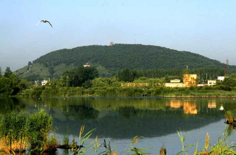 yaoquan山