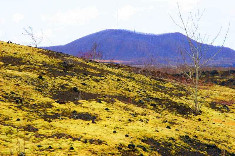 火山地mao